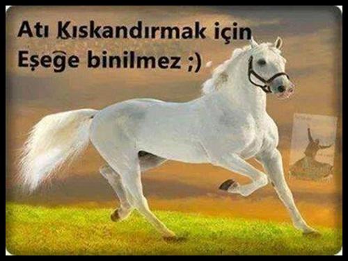 Koyucu-Facebook-Sozleri-2.jpg (500×376)