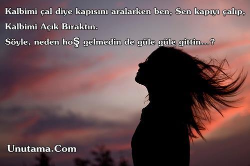 http://resim.unutama.com/Neden-Gittin-Kahraman-Tazeoglu.jpg