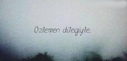 ozlemen-dilegi-ile.jpg (500×242)