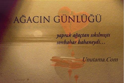 http://resim.unutama.com/yaprak-agactan-sikildiysa-sonbahar-bahanedir.jpg